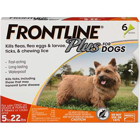 FRONTLINE Plus for Small Dogs (5-22 lbs) Flea and Tick Treatment, 6 Doses - Frontline Plus Dog Flea Control