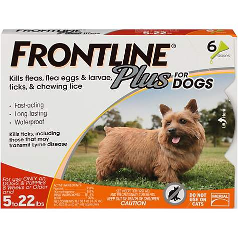FRONTLINE Plus for Small Dogs (5-22 lbs) Flea and Tick Treatment, 6 (Best Heartgard For Dogs)