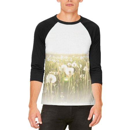 Field Of Wishes Dandelions Mens Raglan T