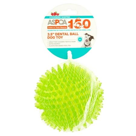 ASPCA TPR Dental Ball, Small
