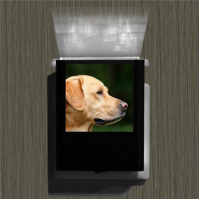 Uniqia UNLC0245 Night Light - Dog 2 Color