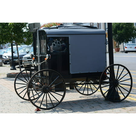 Canvas Print Carriage Horse Amish Buggy Transportation Rural Stretched  Canvas 10 x 14