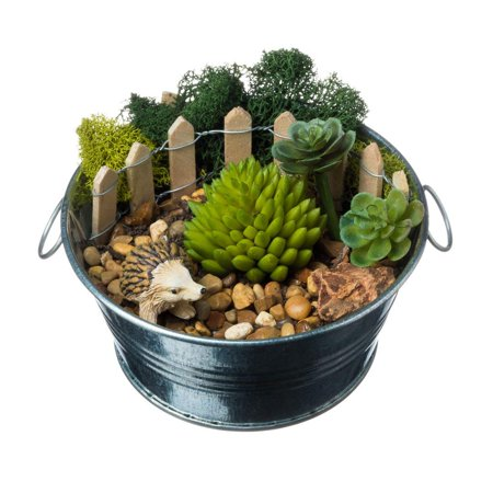 Faux Succulent Terrarium Kit Hedgehog On A Farm Farm Series Complete Diy Gift Set 4 Silver Galvanized Pot With Faux Succulent Nautical