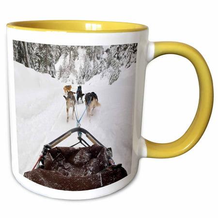 3dRose British Columbia, Whistler, Dog sled adventure-CN02 TDR0076 - Trish Drury - Two Tone Yellow Mug, -