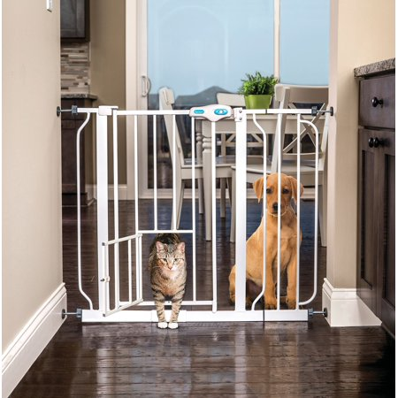 - Carlson Extra Wide Pet Gate with Small Pet Door