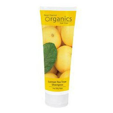 Shampoos Handmade Livemaster Shampoo For Oily Hair Tea Tree And Rosemary
