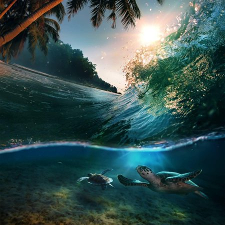 Paradise Surf Sign - Tropical Paradise Template with Sunlight. Ocean Surfing Wave Breaking and Two Big Green Turtles Div Print Wall Art By Willyam Bradberry