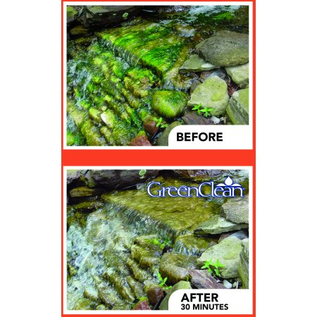 GreenClean Granular Algaecide for Ponds - 2.5 lbs.