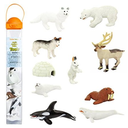 Age 10 Figurine - Safari Ltd Arctic TOOB With 10 Fun Figurines, Including A Harp Seal, Husky, Caribou, Arctic Rabbit, Killer Whale, Walrus, Arctic Fox, Beluga Whale, Igloo, And Polar Bear – For Ages 3 and Up