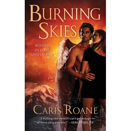 Burning Skies : Book 2 of The Guardians of Ascension Paranormal Romance