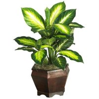 Golden Dieffenbachia with Wood Vase Silk Plnat