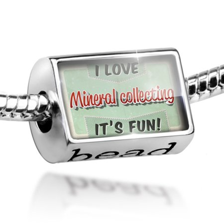 Bead I Love Mineral Collecting  Vintage Design Charm Fits All European Bracelets