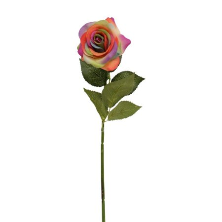 10 Stems of Real touch medium open Real Touch nice rose (Rainbow)