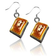 Whimsical Gifts 4550S-ER Holy Bible Charm Earrings, Silver