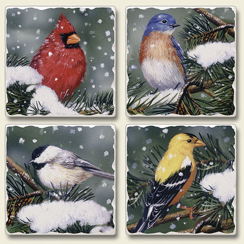 Backyard Birds Cardinal Bluebird Finch Wren Coasters Set of 4 Highland Graphics