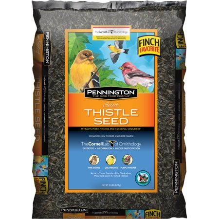 Image of Pennington Thistle Seed Wild Bird Feed, 20 lbs