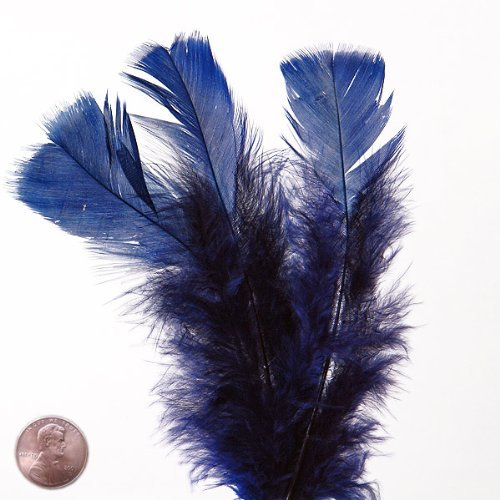 Large Blue Den Turkey Flat Feather (50/Pack)