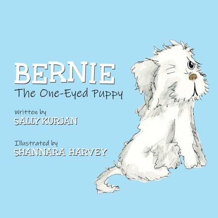 Bernie the One-Eyed Puppy