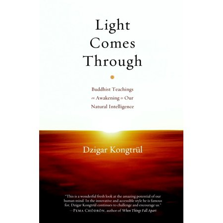 Light Comes Through : Buddhist Teachings on Awakening to Our Natural