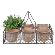 Esschert Design Aged Terracotta 6-Flowerpots in Metal Basket with Handle