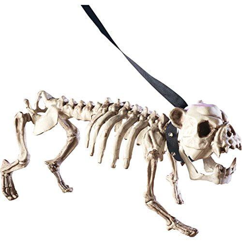 Posable Skeleton Dog Halloween Decoration, White