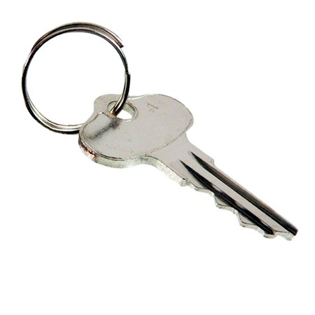 New Ignition Key for John Deere 130 Riding Mower, 160 Riding Mower, 165 Riding Mower AM101600, AM131841 New Ignition Key for John Deere 130 Riding Mower, 160 Riding Mower, 165 Riding Mower AM101600, AM131841Description : Key Set FitsNote : Sold in pairs but priced individually.John Deere - 130 Riding Mower, 160 Riding Mower, 165 Riding Mower, GX70 Riding Mower, GX75 Riding Mower, GX95 Riding Mower, RX63 Riding Mower, RX73 Riding Mower, RX75 Riding Mower, RX95 Riding Mower, SRX75 Riding Mower, SRX95 Riding Mower, SX75 Riding Mower, SX95 Riding Mower