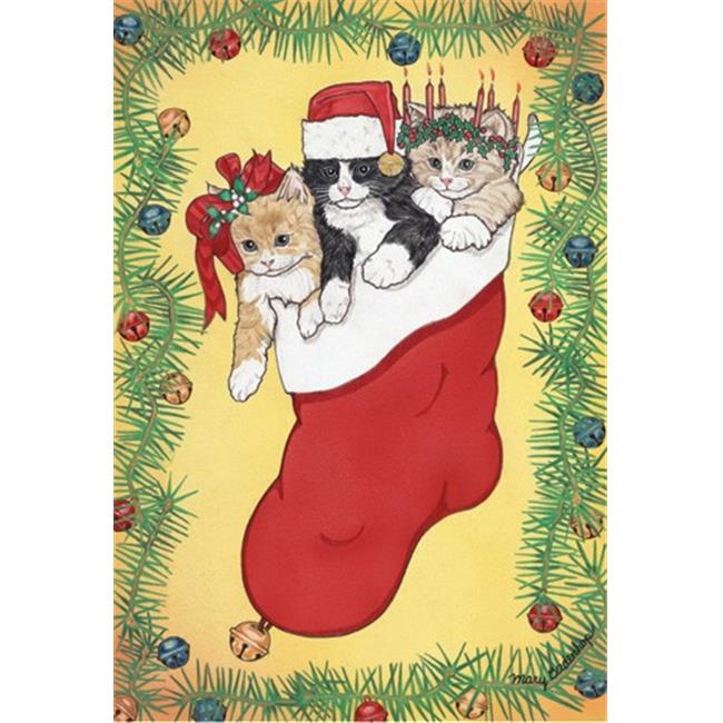 Pipsqueak Productions C414 Stocking Stuffers Cat Christmas Boxed Cards - Pack of 10