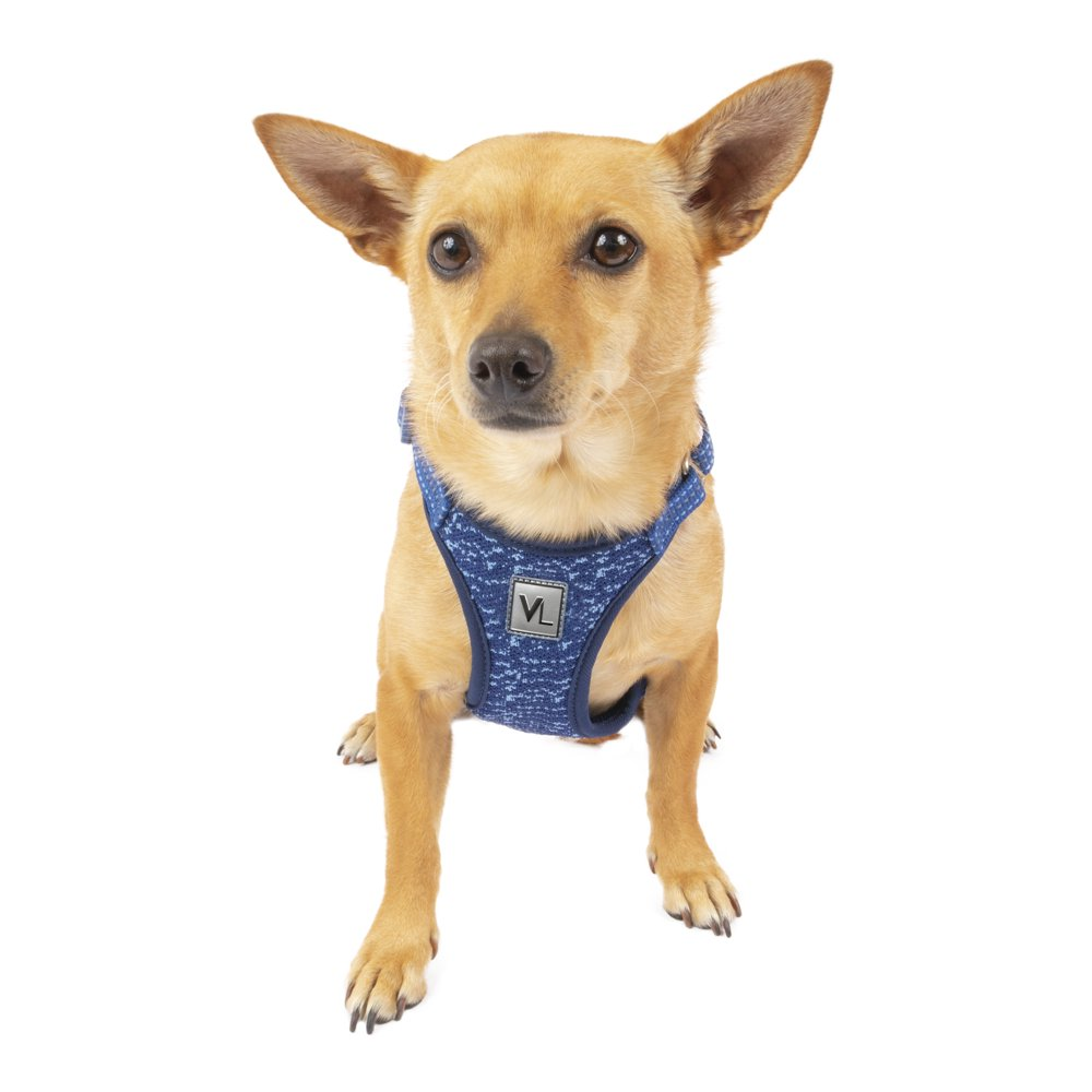 Vibrant Life Flex Knit Dog Harness, Blue, Small