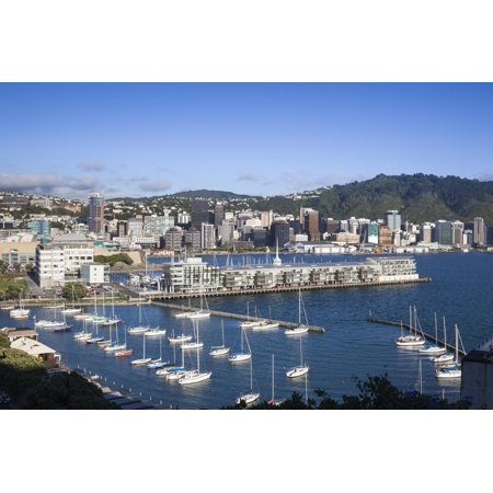 New Zealand, North Island, Wellington, elevated city skyline from Mt. Victoria, dawn Print Wall Art By Walter Bibikw - Party City Wellington