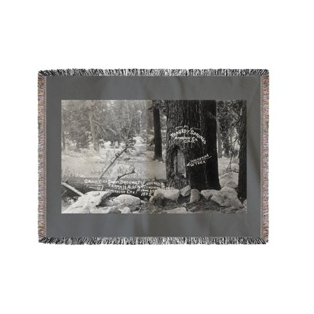 Tragedy Springs, California - Brouwett, Allen, and Cox Graves by Tree (60x80 Woven Chenille Yarn Blanket)