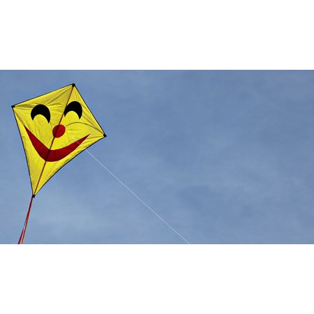 Seattle Flying Dragons (LAMINATED POSTER Flying Kites Wind Dragon Face Face Sky Dragons Poster Print 24 x)