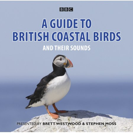 A Guide To British Coastal Birds   And Their Sounds