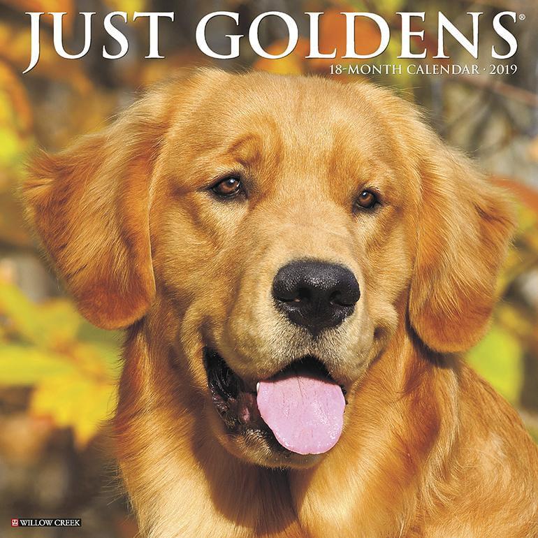 Just Goldens 2019 Wall Calendar (Dog Breed Calendar) (Other)