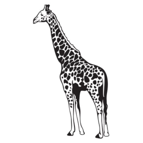 Style and Apply Giraffe II Wall Decal