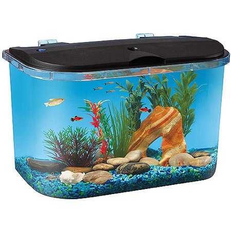 Hawkeye 5 Gallon Starter Aquarium Kit with LED Lighting