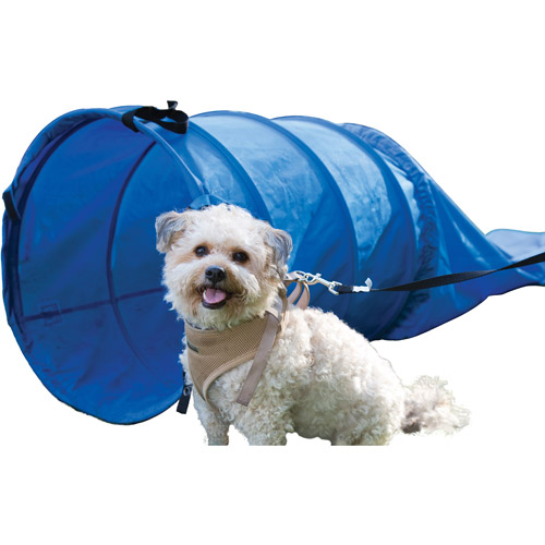 8' Dog Chute and 3' Tunnel, Blue