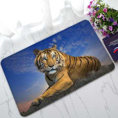 PHFZK Landscape with Beautiful Sky Doormat, Animal Tiger Doormat Outdoors/Indoor Doormat Home Floor Mats Rugs Size 30x18 -