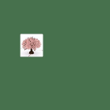 Lovepop Cherry Blossom Pop Up Card 3D Birthday Springtime