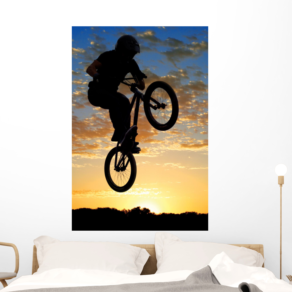 Airborne Bike Wall Mural by Wallmonkeys Peel and Stick Graphic (48 ...