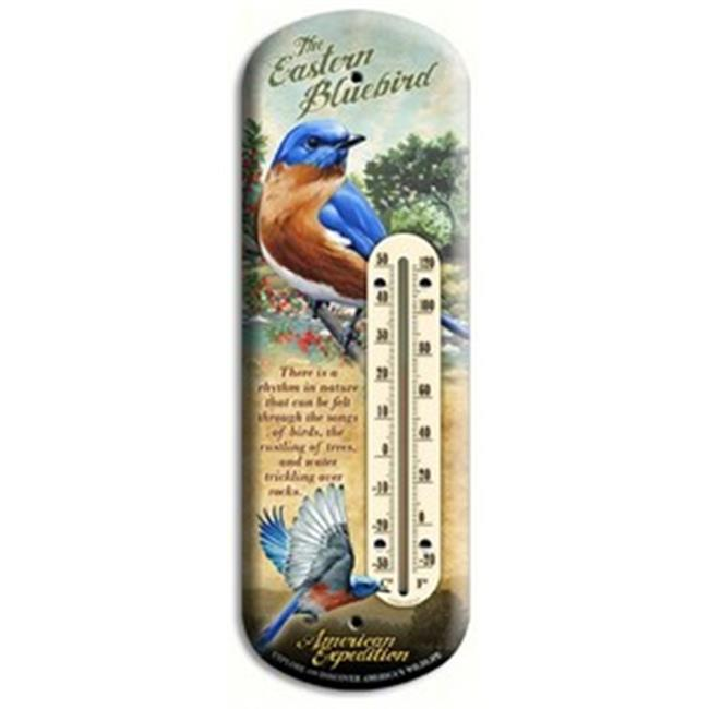 American Expedition AMEBTHM133 Back Porch Tin Thermometer Bluebird