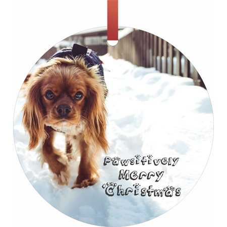 Pawsitively Merry Christmas  - Jacks Outlet TM Flat Round-Shaped Aluminum Hanging Holiday Tree Ornament Made in the