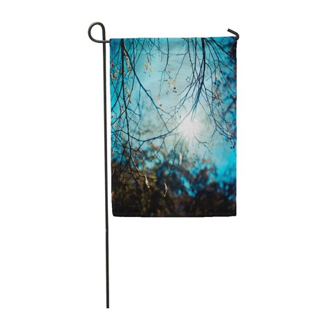POGLIP Green Silhouette Branch of Tree and Sunlight Beautiful Beauty Botanical Bright C Garden Flag Decorative Flag House Banner 12x18 inch - image 1 de 1