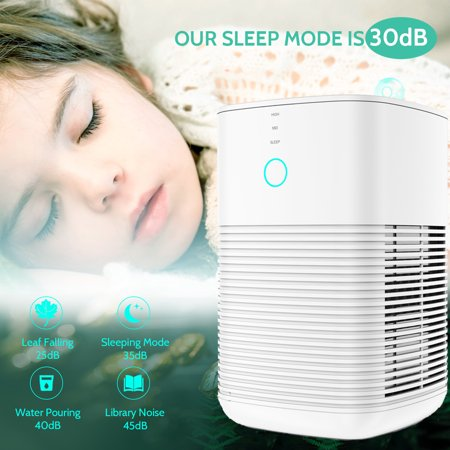 GBlife 3-in-1 Air Purifier with True Hepa Filter, Captures Allergens, Smoke, Odors, Mold, Dust, Germs, Pets, Smokers, Small Room Home Air