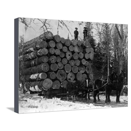 Hauling Logs (Horses Hauling Huge Load of Logs Stretched Canvas Print Wall Art By W.G. Hopps )
