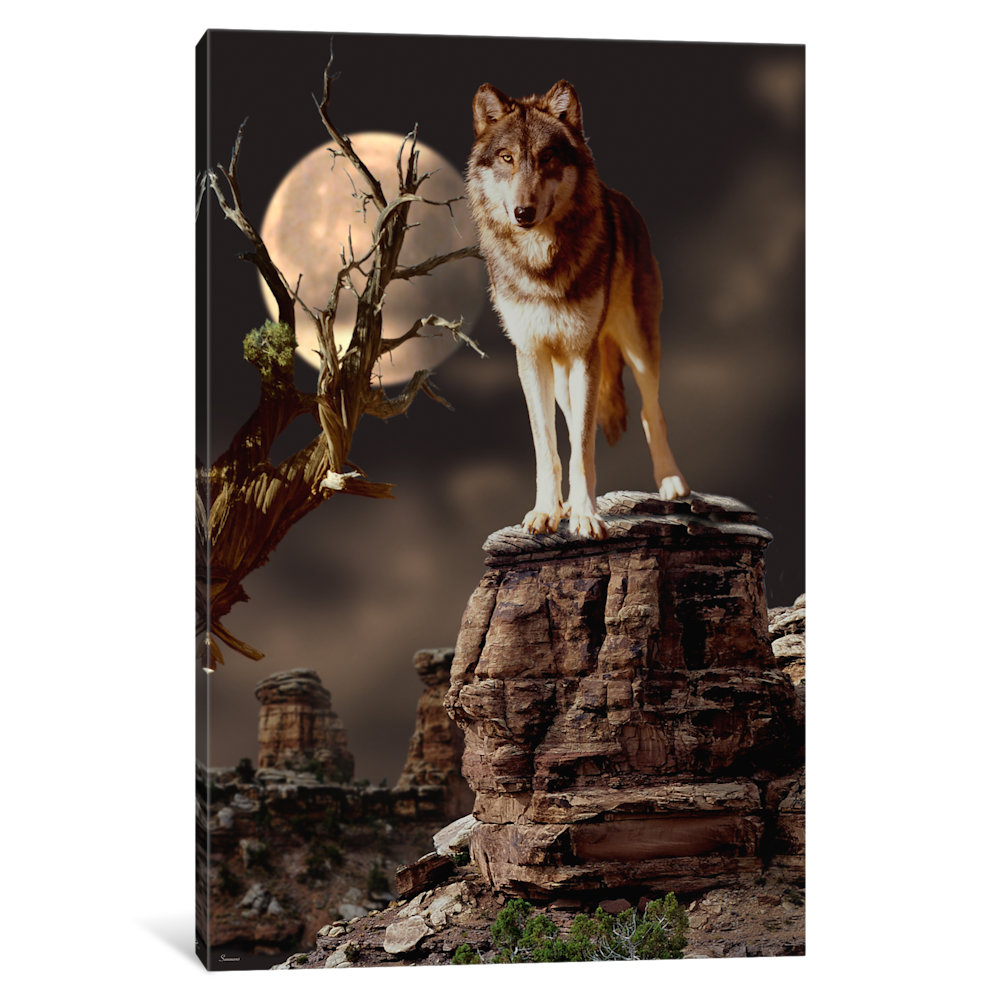iCancas Moonlighter Gallery Wrapped Canvas Art Print by Gordon Semmens