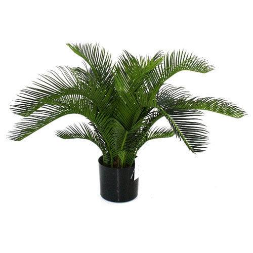 Flora Novara Artificial Sago Cycas Palm Desk Top Plant