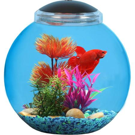 Hawkeye 3 gal betta bowl with led lighting for Betta fish food walmart