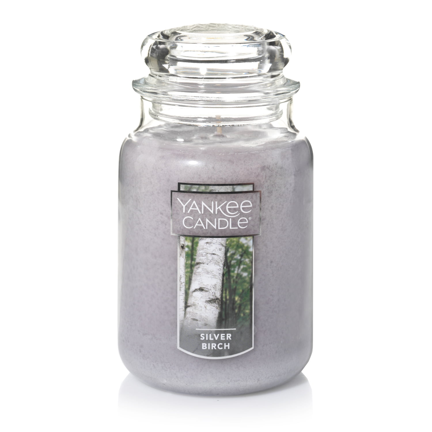 Yankee Candle Large Jar Candle, Silver Birch by Newell Brands
