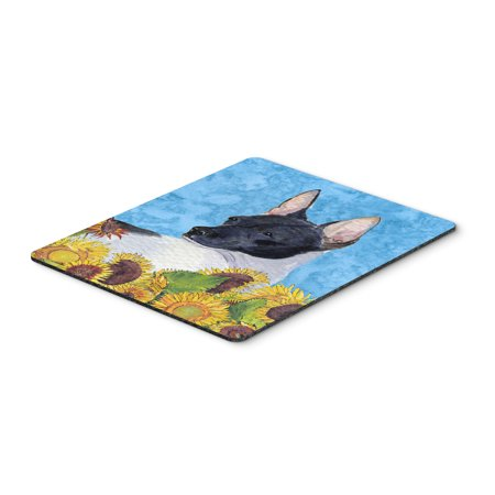 Rat Terrier Mouse Pad, Hot Pad or Trivet