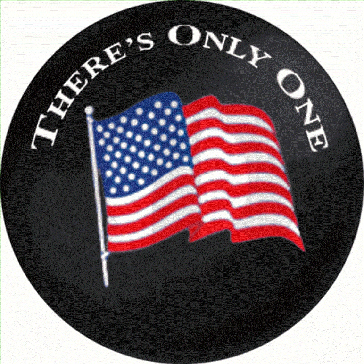 Genuine Jeep® Accessories Mopar Part # 82208051AD Premium Spare Tire Cover  With American Flag And